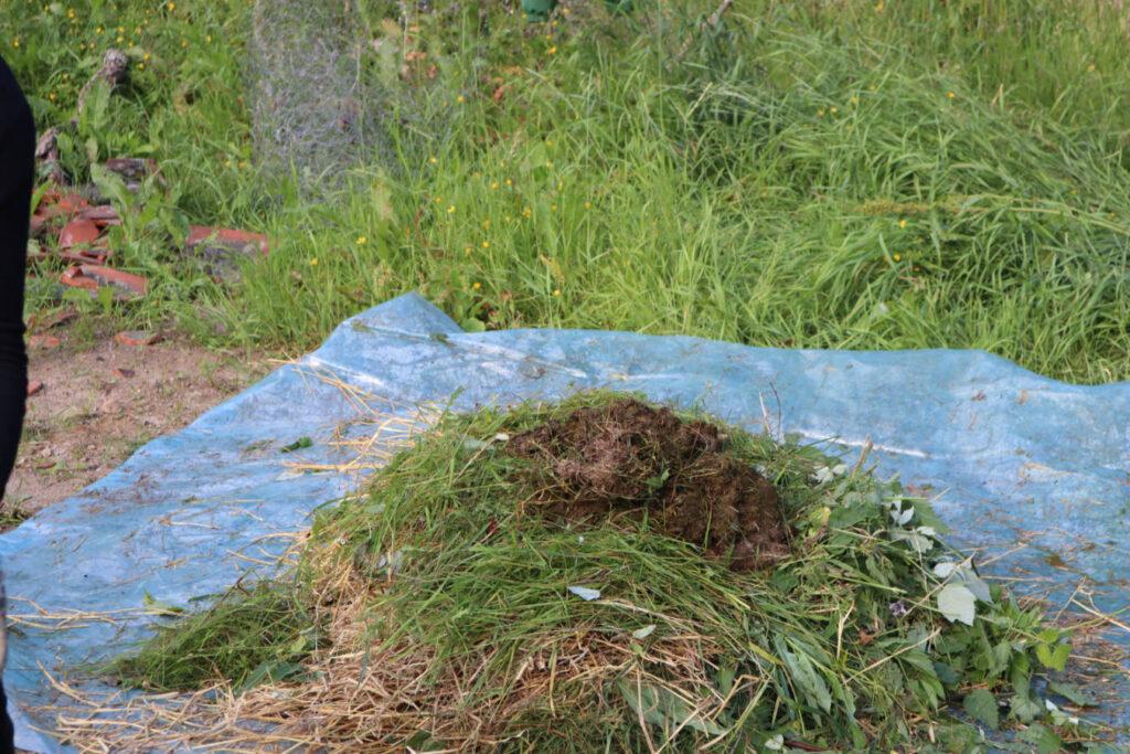 Opsal-Gard-Kompost-kurs-3